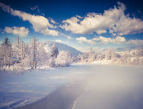 Foggy winter landscape in mountain village. Royalty Free Stock Image