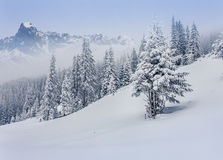 Foggy winter landscape in mountains. Stock Images