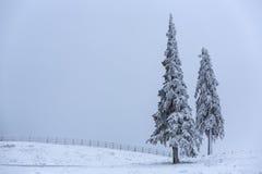 Foggy winter landscape Stock Photos