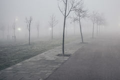 Foggy winter landscape on a urban park Royalty Free Stock Images