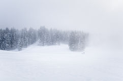 Foggy Winter Lanscape Stock Images
