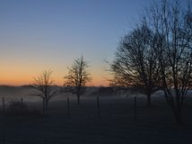 Foggy winter morning and bare trees. A winter morning with bare tree branches, fog, blue sky and an orange sunrise Stock Photo