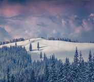 Foggy winter morning in the Carpathian mountains. Stock Photo