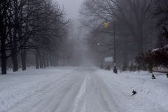 Foggy winter morning in a city park with snow-covered alleys royalty free stock image
