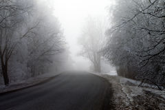 Foggy winter morning. Stock Photography