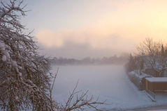 Foggy winter morning with snowfield and branches with snow Stock Images