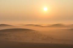 Foggy winter morning sunrise in the desert. Dubai, UAE. Royalty Free Stock Photo
