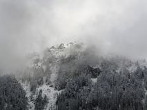 Foggy Winter Mountain. Mountainside Covered by Snow and Trees. royalty free stock photo