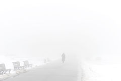 Foggy winter park Royalty Free Stock Photography