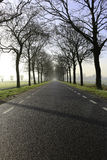 Foggy winter road. Foggy road with trees in a rural winter landscape Royalty Free Stock Photos
