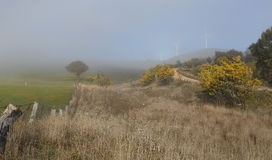 Foggy winter rural landscape and Carcoar Blayney Wind Farm Stock Images