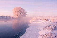 Free Foggy Winter Sunrise Stock Photography - 63972172