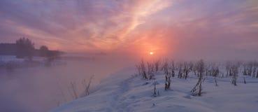 Winter sunset. Foggy winter evening Royalty Free Stock Photos