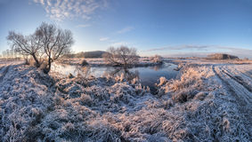 Frozen fields. Cold sunrise with frost Stock Images