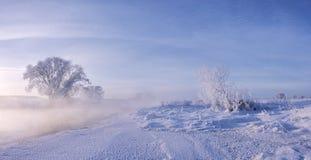 Frozen sky. Snow and ice Stock Photos