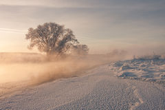 Frozen river. Side Royalty Free Stock Image