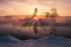 Cold sunrise. Winter sunshine Stock Photography