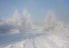 Foggy winter sunrise. Trees under the snow Stock Photo