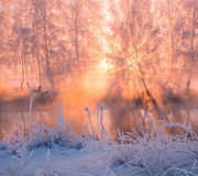 Foggy winter sunrise Stock Photo