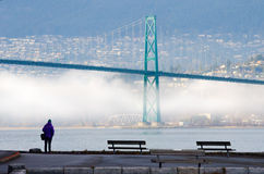 Foggy Winter in Vancouver, British Columbia with Lions Gate Bridge. A cold wintery scene in Vancouver, British Columbia`s iconic Stanley Park with the Lions Gate royalty free stock photography