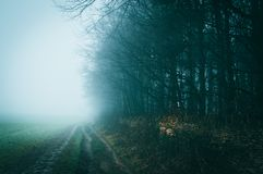 A foggy winters day along a path on Bredon Hill in the English countryside with an atmospheric, moody edit. A foggy winters day along a path on Bredon Hill Royalty Free Stock Photography