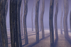 Foggy Woods. 3 D render of foggy woods Stock Photo