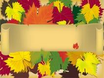 Fogli, autunno. Autunno. Immagine Stock