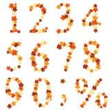 Fogli degli aceri di autunno numerali Fotografia Stock