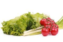 Fogli dei pomodori della lattuga, del porro e di ciliegia Fotografie Stock Libere da Diritti