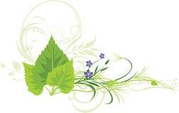 Fogli della betulla, fiori con erba ed ornamento Immagini Stock