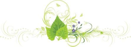 Fogli della betulla, fiori con lo sprig ed ornamento Immagini Stock Libere da Diritti
