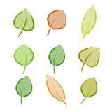 Fogli di autunno 3 Immagini Stock
