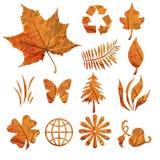 fogli di autunno immagini stock libere da diritti