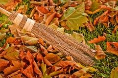 Fogli di autunno ampi Fotografia Stock