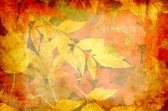 Fogli di autunno di Grunge Immagine Stock Libera da Diritti