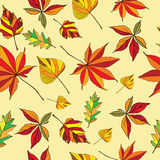 Fogli di autunno senza giunte Immagini Stock Libere da Diritti