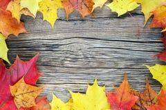 Fogli di autunno su priorità bassa di legno Posto per il vostro testo Fotografie Stock