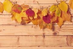 Fogli di autunno su priorità bassa di legno Fotografia Stock