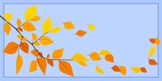 Fogli di autunno su una priorità bassa blu. Illustr di vettore Fotografia Stock