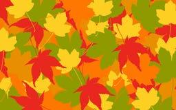 Fogli di autunno variopinti Immagine Stock Libera da Diritti