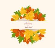 Fogli di autunno variopinti su un vecchio documento Fotografie Stock