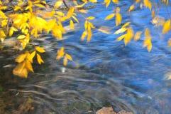 Fogli di autunno ventosi sulla priorità bassa del fiume fotografia stock