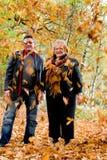 Fogli di caduta in autunno fotografia stock
