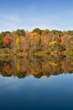 Fogli di colore di autunno sul lago Immagine Stock