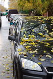 Fogli di colore giallo sull'automobile Fotografie Stock Libere da Diritti