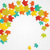 Fogli di volo di autunno con lo spazio in bianco della copia Fotografie Stock Libere da Diritti
