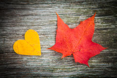 Fogli e cuore di autunno fotografia stock libera da diritti