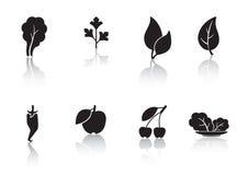 Fogli e frutta Fotografie Stock