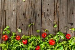 Fogli e pomodori dell'insalata Fotografie Stock Libere da Diritti