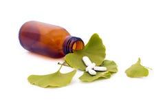 Fogli e prodotti farmaceutici dell'albero di biloba del Ginkgo. Immagini Stock